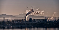 Anacortes Refinery Morning